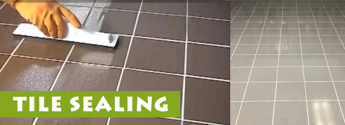 Tile Sealing Services in Symonston